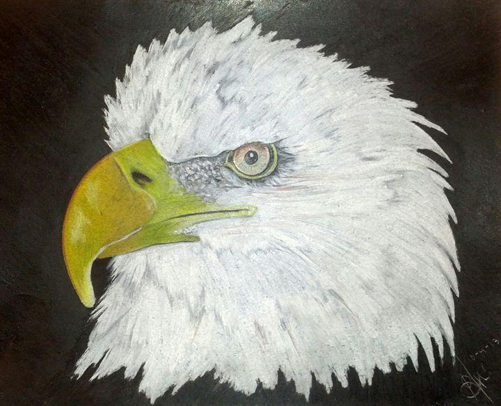 Bald Eagle - Kris_en J__vis AR.T