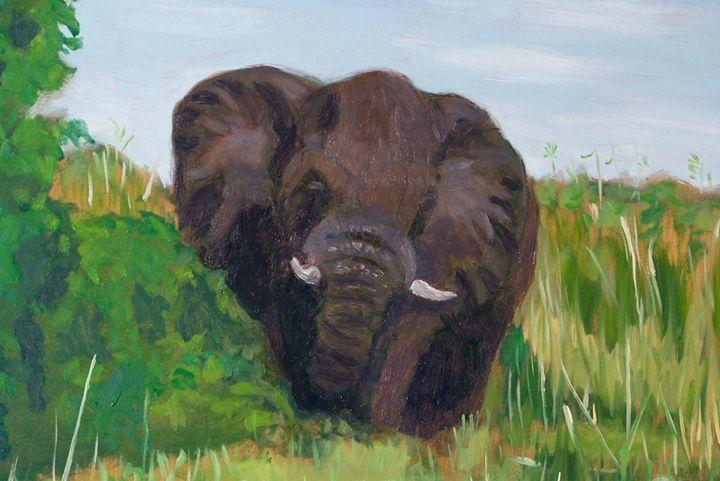Okavango Delta Elephant - Richard Wyman Fine Art
