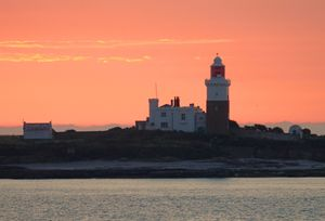 Tranquility Coquet Light