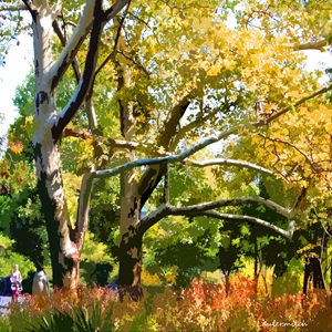 Zoo Trees - Paintings by John Lautermilch