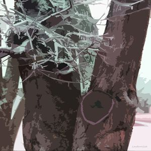 Winter Trees - Paintings by John Lautermilch
