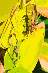 Leaf Abstraction 1 - Paintings by John Lautermilch