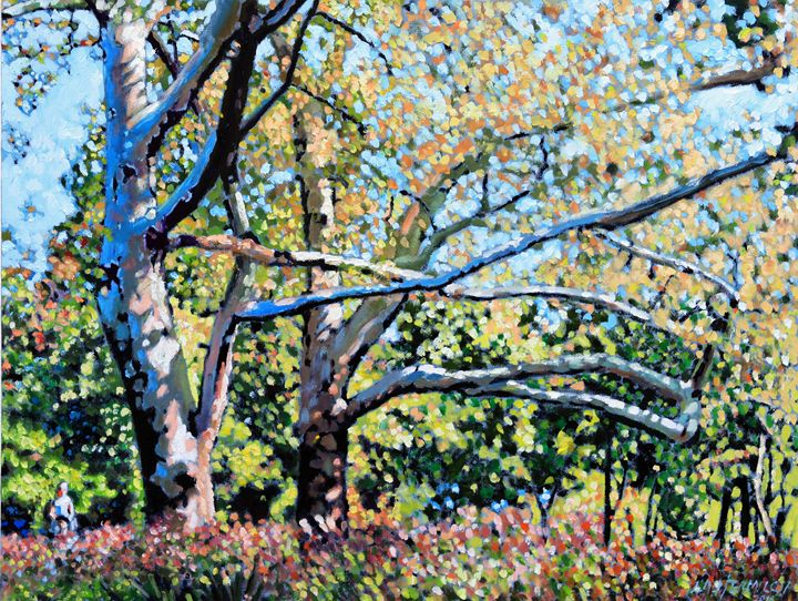 Sycamore Trees at the Zoo - Paintings by John Lautermilch