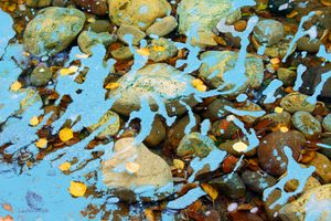 Rocks In Stream - Paintings by John Lautermilch