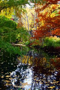 Autumn Creek - Paintings by John Lautermilch