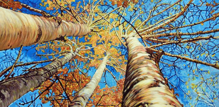 Aspens in Colorado - Paintings by John Lautermilch