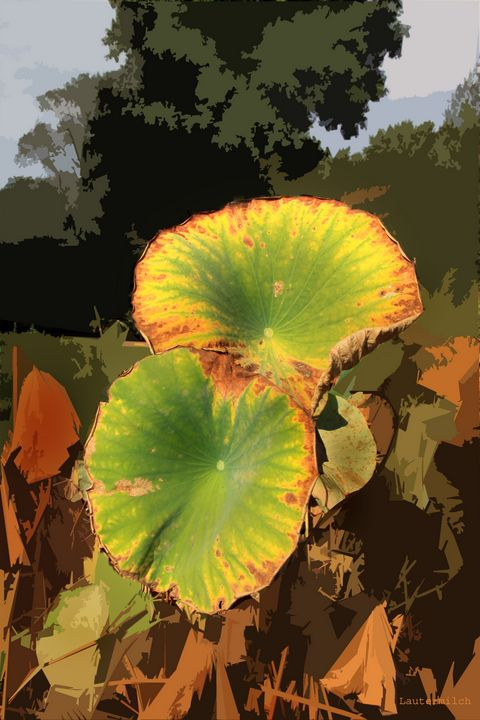 Autumn Lotus Leaves - Paintings by John Lautermilch