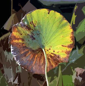 Autumn Lotus Leaf Two - Paintings by John Lautermilch