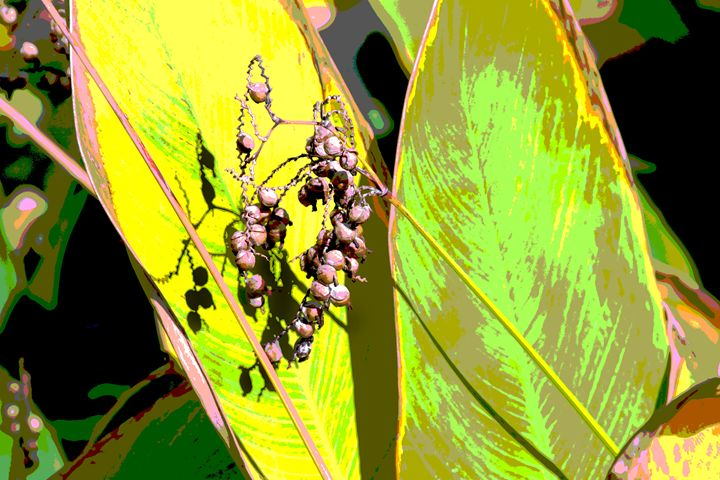 Leaf Abstraction 3 - Paintings by John Lautermilch