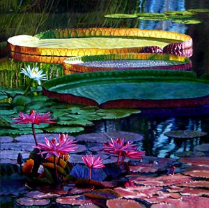 Stillness of Color and Light - Paintings by John Lautermilch