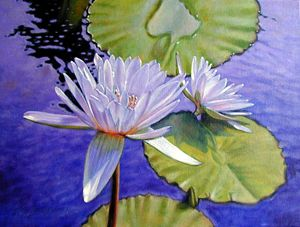 Sunlit Petals - Paintings by John Lautermilch