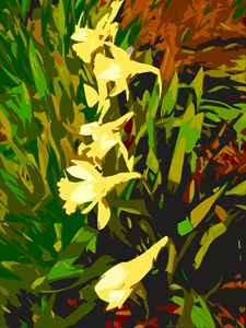 Daffodils - Paintings by John Lautermilch