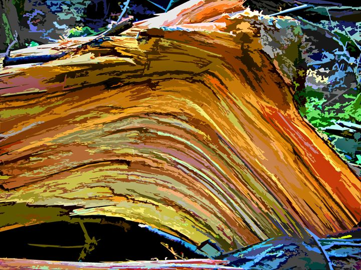 Stump Design - Paintings by John Lautermilch