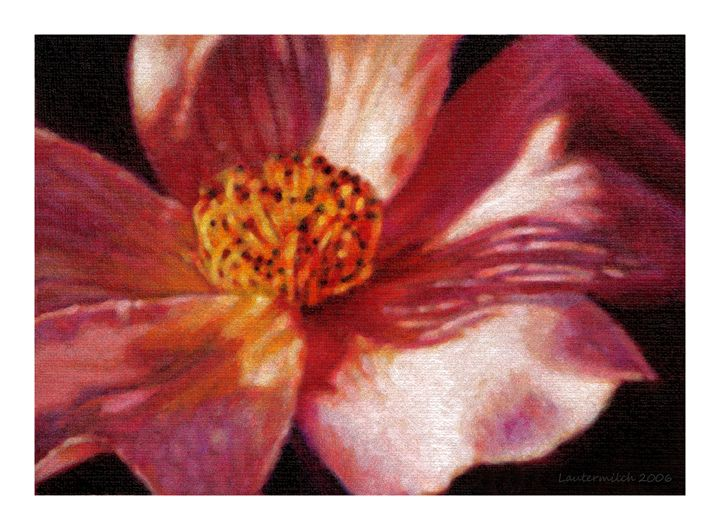 Petals and Long Shadows - Paintings by John Lautermilch