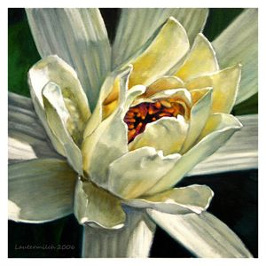Petals of Ivory - Paintings by John Lautermilch
