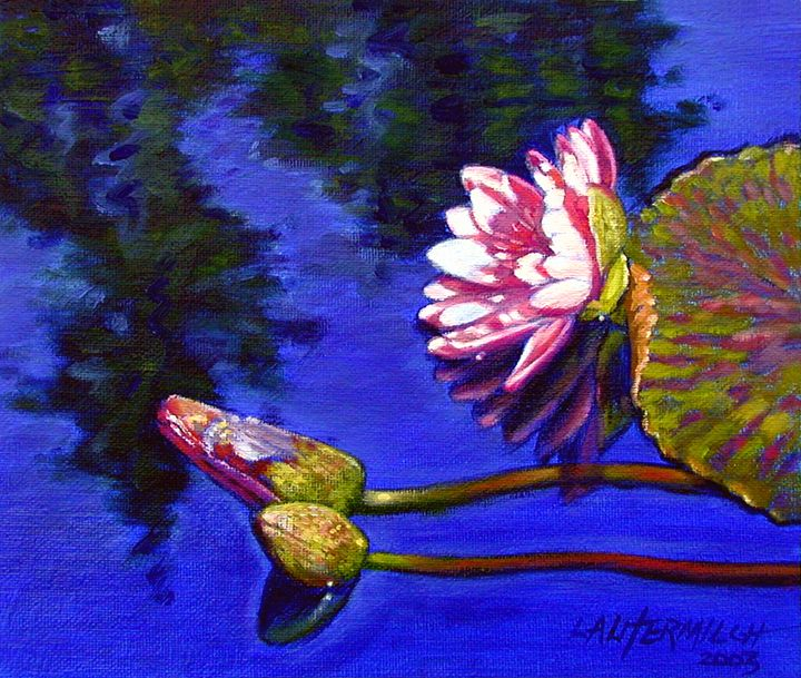 Sunlight on Pink - Paintings by John Lautermilch