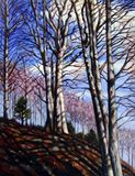 Oaks on Missouri River Bluffs - Paintings by John Lautermilch