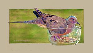 Dove in My Bowl - Paintings by John Lautermilch
