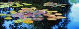 Peace Among the Lilies - Paintings by John Lautermilch