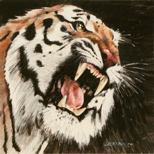 Tiger 123-2005 - Paintings by John Lautermilch