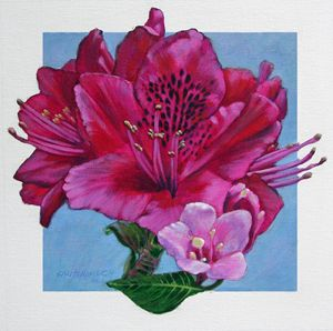 Rhododendron and Pear Blossom - Paintings by John Lautermilch