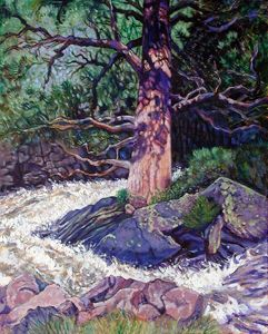 Old Pine in Rushing Stream - Paintings by John Lautermilch