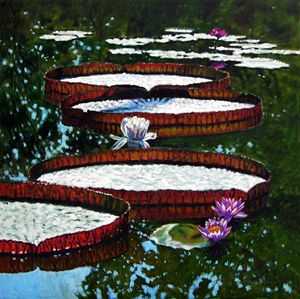 Lily Pad Highlights 1-2008 - Paintings by John Lautermilch