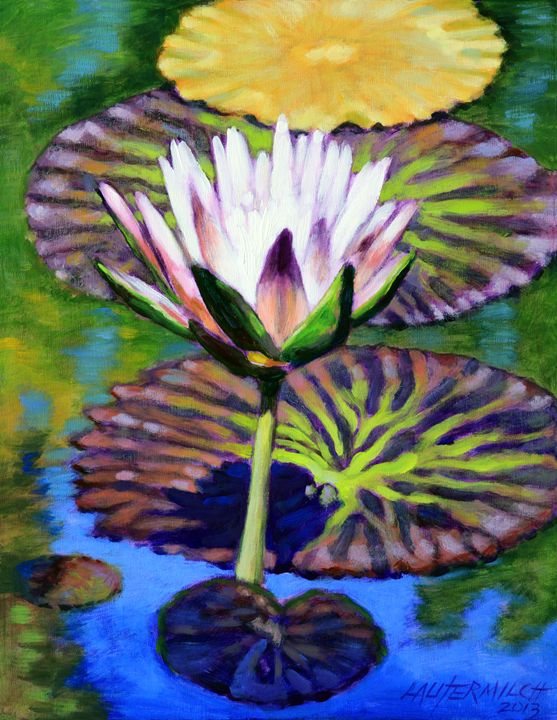 The Patterns of Beauty - Paintings by John Lautermilch