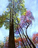 Sunlight on Upper Branches - Paintings by John Lautermilch