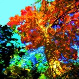 Tree Ablaze - Paintings by John Lautermilch