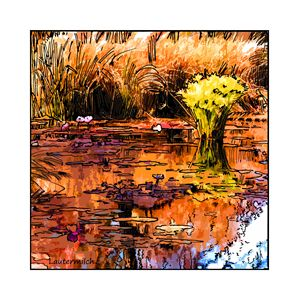 Autumn on the Garden Pond