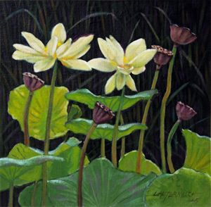 Touching Lotus Blooms - Paintings by John Lautermilch