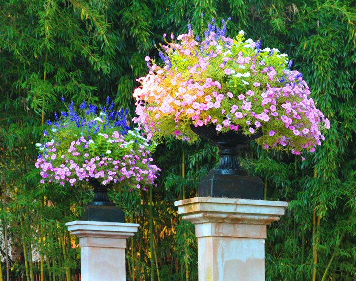 Shaws Garden Gate - Paintings by John Lautermilch