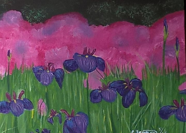 Irises galore - Artbycindyj