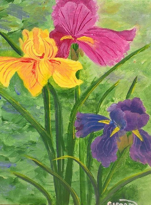 Irises - Artbycindyj