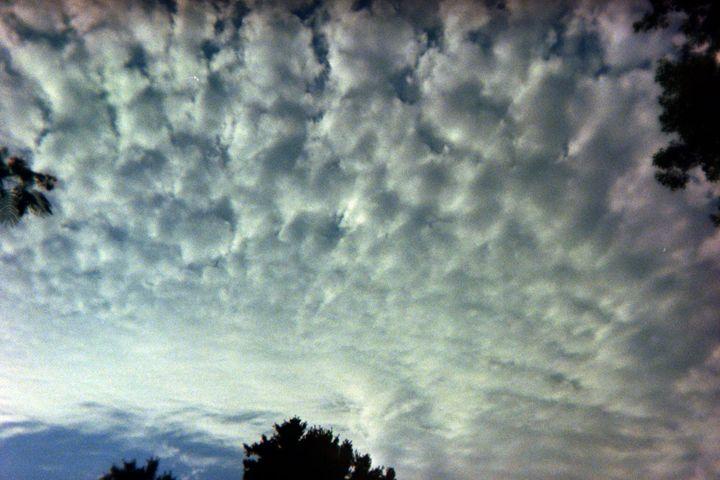 Cloudy - Amoureuse