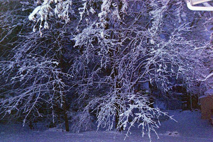 Winter Wonderland - Amoureuse