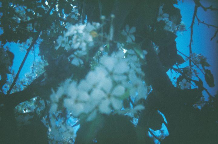 Kaleidoscope Vision - Amoureuse