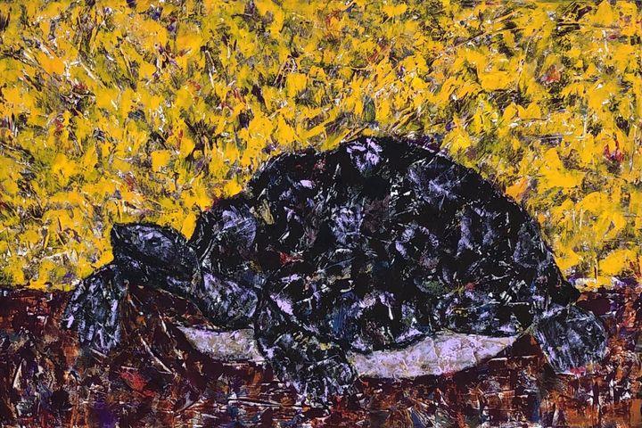 Desert Tortoise-AZ Natives series - GrannyCAbstracts