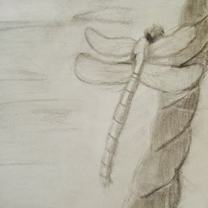 Dragon Rope