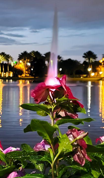 Hilton Tuscany Village Fountain - Rachel Csontos