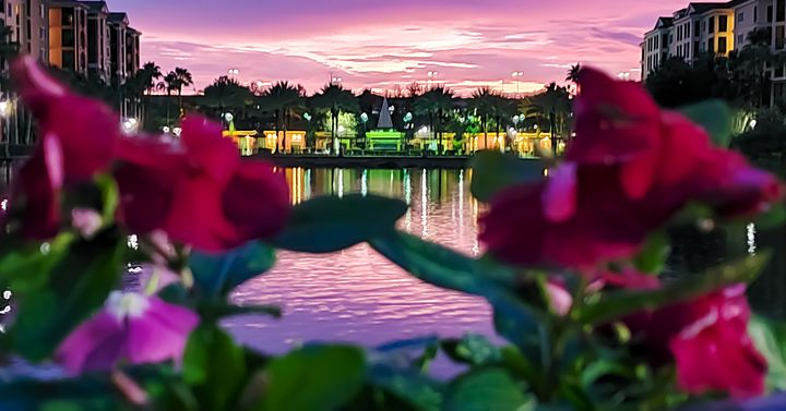 Hilton Tuscany Village Orlando - Rachel Csontos