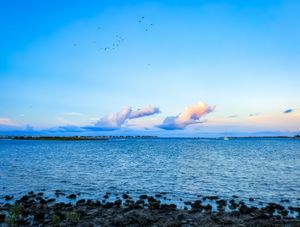 St. Auggie's Shores