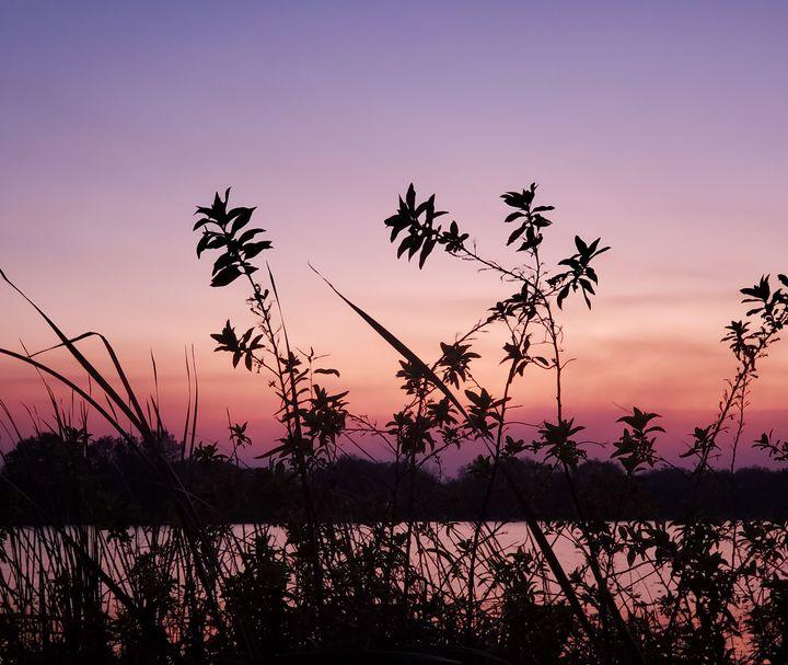 Sunset - Rachel Csontos