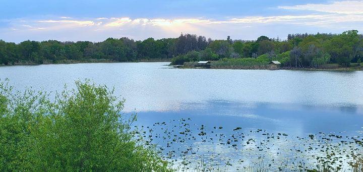 Lake at Sunrise - Rachel Csontos
