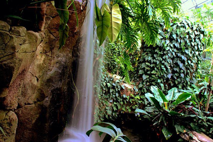 Waterfall in djungle - Patrick Freyer