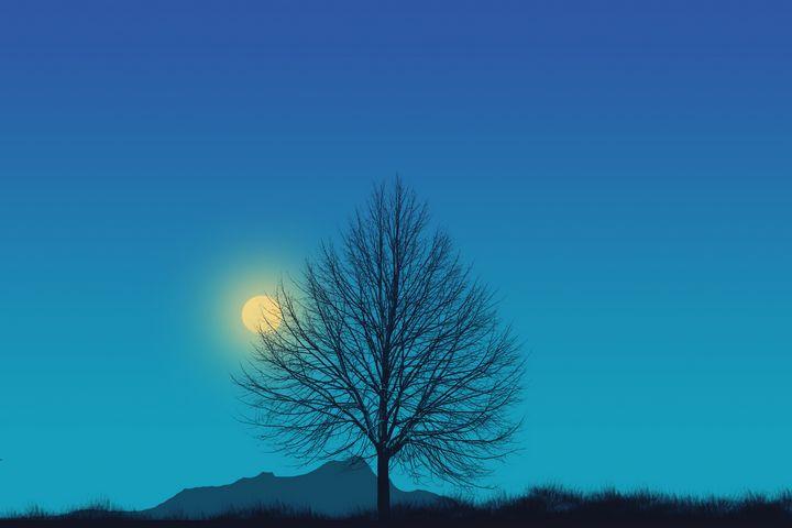 Moon Night - Ynes