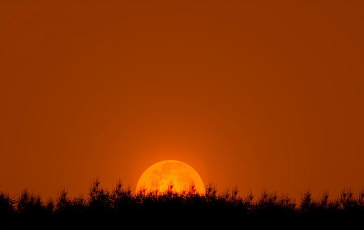 Red Moon - Ynes