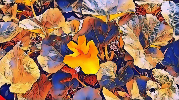 Pumpkin Patch Delight - Dianne Mead