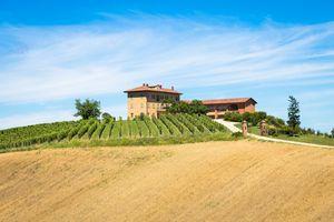 Piedmont hills in Italy